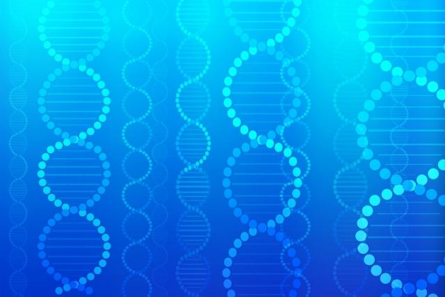 大人ニキビの体質は遺伝の影響